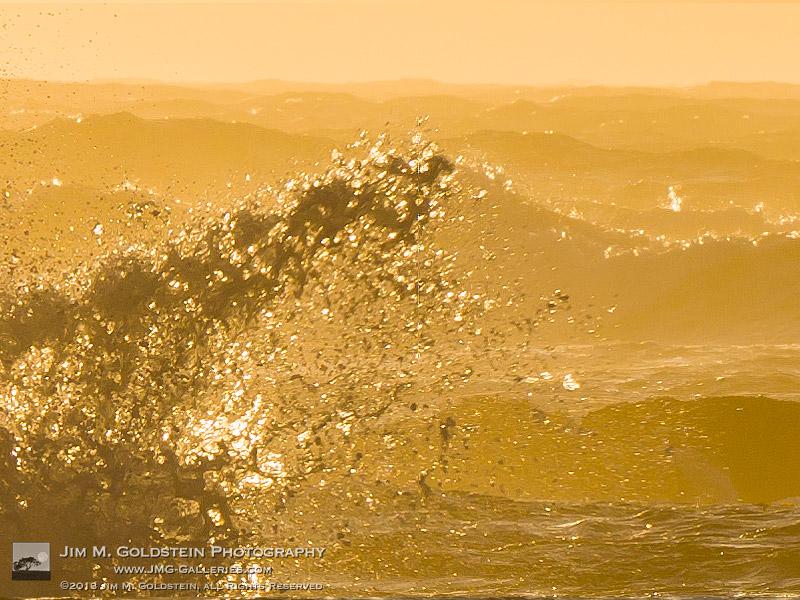 Fury – Asilomar State Beach, California - Hasselblad H5D 1-to-1 crop