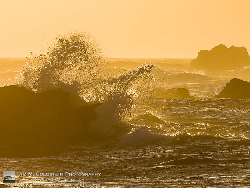 Fury - Asilomar State Beach, California - Detail