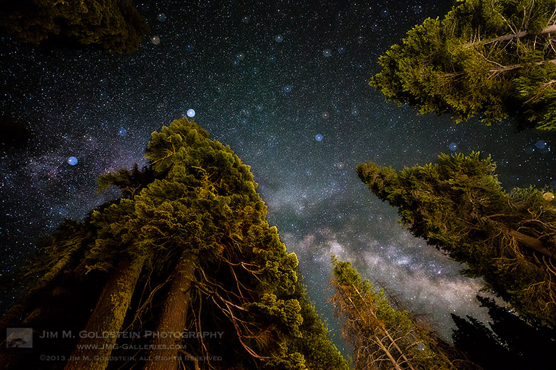 all that glitters - milky way above yosemite forest