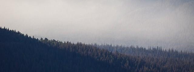 Morning Mist - Glacier National Park