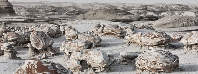 Egg Factory - Bisti Badlands, New Mexico