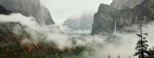 Yosemite Valley Fog & Rain