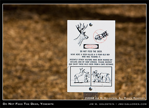 Do Not Feed The Deer, Yosemite photo by Jim M. Goldstein