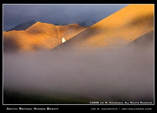 Arctic Refuge: Hidden Beauty landscape photo by Jim M. Goldstein