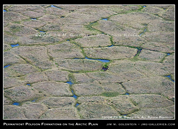 Arctic Refuge: Permafrost Polygon Formations on the Arctic Coastal Plain