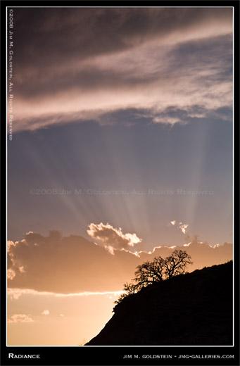 Radiance landscape photo by Jim M. Goldstein
