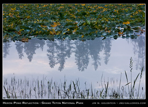 Heron Pond Reflection, Grand Teton National Park photo by Jim M. Goldstein