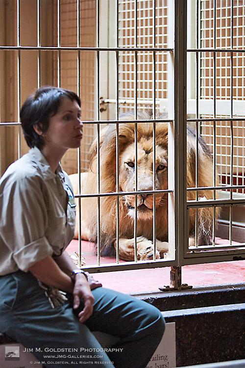 Lori Komejan at San Francisco Lion House