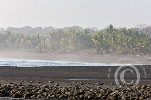 Rainforest Lined Beach - Corcovado National Park, Costa Rica