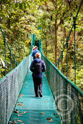 A Tourist Walking the Selvatura Park Canopy Tour & Walkway Bridges