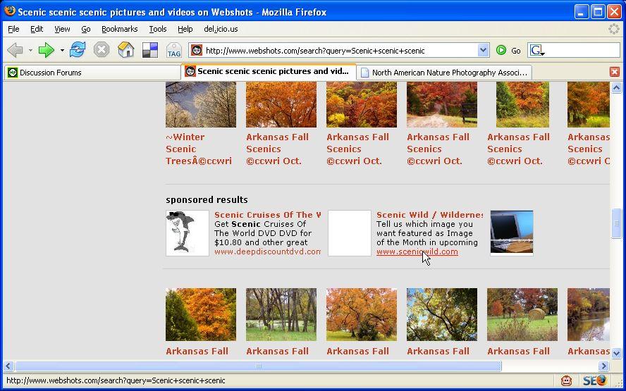 DirtySearch Engine Optimization Tactic Screenshot at Webshots.com