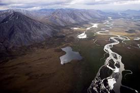 Where the Arctic Refuge Was Born