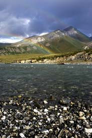 Arctic Refuge Rainbow (Portrait)
