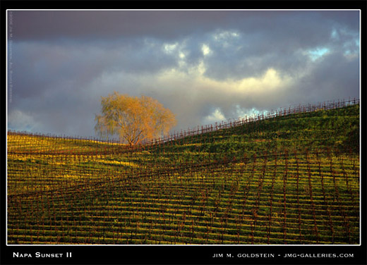 Napa Sunset II landscape photograph by Jim M. Goldstein
